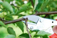 Original Löwe 5127 kleine Amboss Schere mit spitzer Klinge